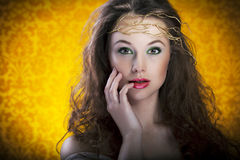Beautiful girl on vintage background, proffesional make up Stock Photos