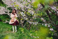 Beautiful girl in a vintage dress. Spring flowers. Lolita style. Victorian style. Beautiful girl in a vintage dress. Spring flowers. Victorian style royalty free stock photography