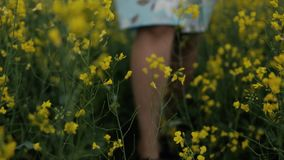Beautiful girl walking in the field of yellow flowers. Smiles and laughs. A beautiful young girl dressed in a blue dress walks thoughtfully across a field of stock video
