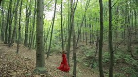 Beautiful Girl Walking In Forest stock footage