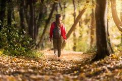 Beautiful girl walking trough forest in autumn season royalty free stock photo
