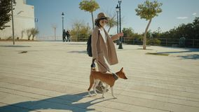Beautiful girl walks with her dog near sea stock video