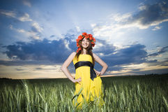 Beautiful girl in the wheat field Stock Photos