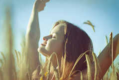 Beautiful girl on the Wheat Field Royalty Free Stock Images