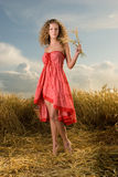 Beautiful girl in wheat field on sunset Stock Photography