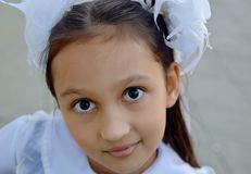 Beautiful girl with white bows, schoolgirl portrait royalty free stock images