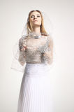 Beautiful girl in a white dress covered with a mesh Royalty Free Stock Photos