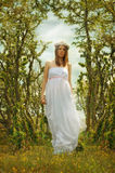 Girl in a white dress. Beautiful girl in a white dress with a wreath on her head Stock Images