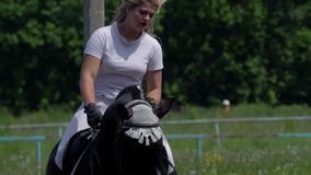 A beautiful girl in white hair and white clothes is riding a black brown stallion. The girl makes the horse perform various beauti stock video