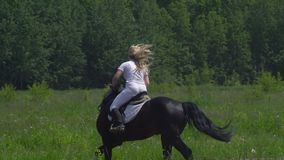 A beautiful girl in white hair and white clothes is riding a black brown stallion. The girl makes the horse perform various beauti stock footage