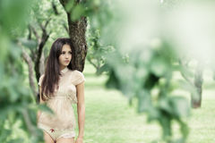 Beautiful girl in a wild garden Stock Images
