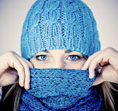 Beautiful girl in winter Royalty Free Stock Images