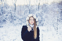 Beautiful girl in winter Stock Photography