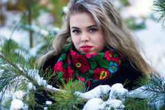 Beautiful girl in winter Christmas photo shoot at the park Royalty Free Stock Image