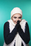 Beautiful girl in winter clothes Royalty Free Stock Photo
