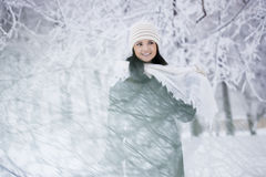 Beautiful girl in winter forest Stock Photos