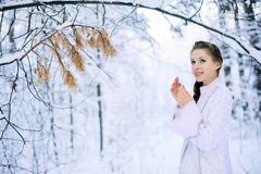 Beautiful girl in a winter forest Stock Image