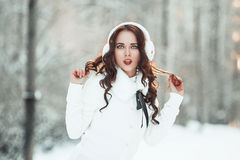 Beautiful girl in winter forest Stock Image