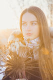 Beautiful girl in winter Royalty Free Stock Photo