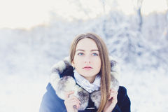 Beautiful girl in winter Royalty Free Stock Photography