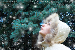 Beautiful girl in a winter jacket Stock Image