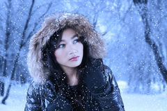 Beautiful girl in winter park Royalty Free Stock Image