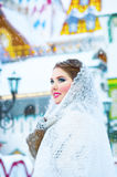 Beautiful girl in the winter Stock Images