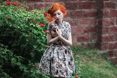 Free Beautiful Girl With Red Hair Royalty Free Stock Photo - 106004315