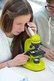 Beautiful girl working at biology classroom Stock Photo