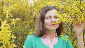 Beautiful girl among yellow blossom spring tree touching and smelling flowers.  stock video footage