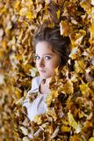 Beautiful girl in a yellow leaves Stock Images