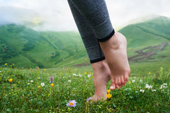 Beautiful girls barefoot in cool morning dew on grass. Stock Photo