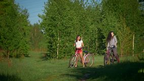 Beautiful girls on bicycles on the background of green trees in a Sunny day in the Park. Telephoto shot stock video footage