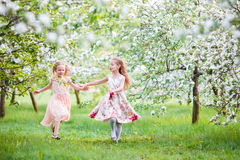 Beautiful girls in blooming apple tree garden enjoy warm spring day Royalty Free Stock Photography