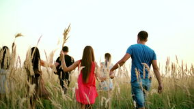 Beautiful girls and boys walking in the field - spikes in the sunset stock video