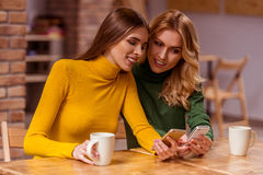 Beautiful girls in cafe Royalty Free Stock Image