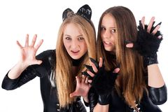 Beautiful girls in cat costume Royalty Free Stock Images