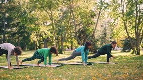 Beautiful girls are doing yoga exercises in park practising sequence of asanas upward and downward facing dog then stock video footage