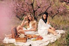 Beautiful girls in elegant dresses having romantic picnic among flowering peach trees in garden stock image
