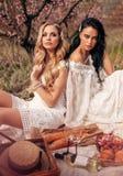 Beautiful girls in elegant dresses having romantic picnic among flowering peach trees in garden royalty free stock photography