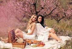 Beautiful girls in elegant dresses having romantic picnic among flowering peach trees in garden stock photo