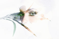 Beautiful girls eyes behind a window Royalty Free Stock Images