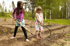 Beautiful girls in the garden Royalty Free Stock Image