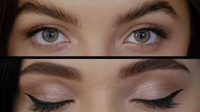 Collage of eyes. Beautiful girls with green eyes close-up. Background collage of eyes closeup. Diverse young women with professional makeup looks straight into stock video footage