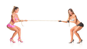 Beautiful girls pulling a rope Royalty Free Stock Images