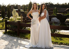 Beautiful girls wearing elegant dresses and luxurious crown Royalty Free Stock Photo