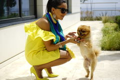 Beautiful glamour elegant brunette female model with a small dog. Portrait of beautiful glamour elegant brunette female model with a small dog Royalty Free Stock Photography