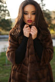 Beautiful glamour woman with dark hair in luxurious fur coat Royalty Free Stock Image