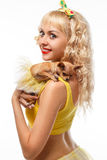 Beautiful glamour woman with small dog Chihuahua in hands. Glamorous girl holding a chihuahua dog and kisses him isolated on a white background.yellow clothes Stock Images