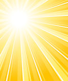 Beautiful glaring sunburst. Vertical background. Stock Photography